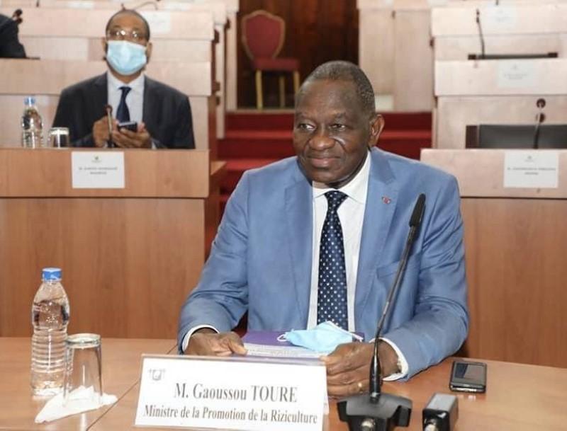 Gaoussou Touré, Ministre de la Promotion de la Riziculture